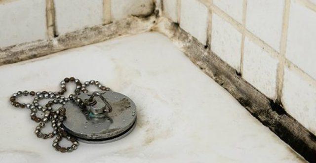 Schimmel in badkamer verwijderen en voorkomen